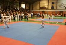 "Održan X karate turnir ""Gradačac 2016"""