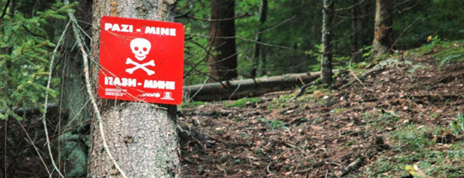 Počelo netehničko izviđanje minski sumnjivog područja u Zelinji Srednjoj