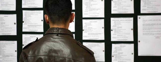 Na Birou 325 nezaposlenih sa visokim obrazovanjem