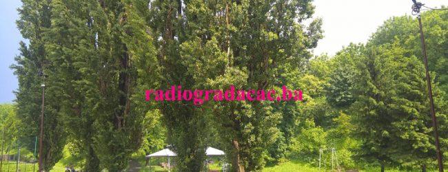 Sječa i podmlađivanje stabala radi sigurnosti građana, nakon posljednjeg nesretnog slučaja nema odustajanja