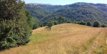 Najava uspostave i zamjene zemljišne knjige za k.o. Gornja Međiđa, Donja Međiđa, Kerep i Srebrenik Grad