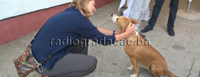 U Gradačcu otvoren Centar za humano zbrinjavanje pasa