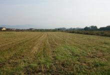 RTV SLON: Do kraja januara isplata poticaja poljoprivrednicima u Tuzlanskom kantonu za 2019. godinu