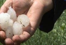 Olujno nevrijeme sa gradom prouzrokovalo štete u poljoprivredi