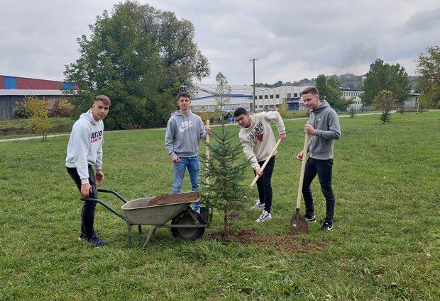 Park Stara banja obogaćen novim sadnicama